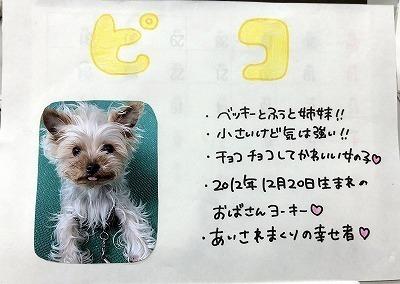 IMG_6144.jpg